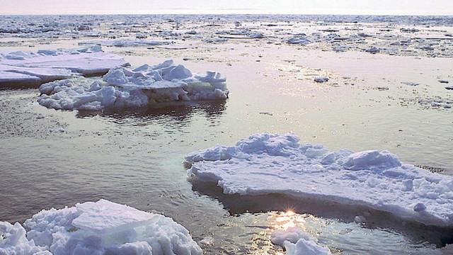 Întinderile de gheață din Marea Bering au ajuns la cel mai redus nivel din ultimii 5.500 de ani (studiu)