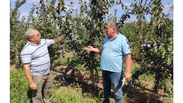 30 de agricultori vor primi certificate internaționale GLOBALG.A.P. și GRASP
