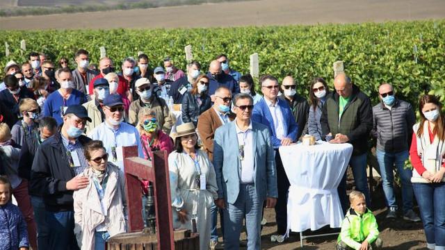 Ambasadori acreditați în R. Moldova au cules struguri în UTA Gagauz-Yeri