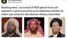 Liderul Al-Qaida, Abu Muhsin al-Masri, a fost ucis în Afganistan