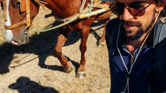 CU MINTEA DESCHISĂ  | Odiseea căluților: ce învățăm de la animale despre noi oamenii
