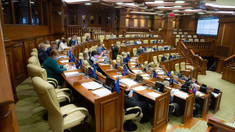 Modificarea Legii cu privire la Serviciul Vamal a fost aprobată, în prima lectură, de Parlament