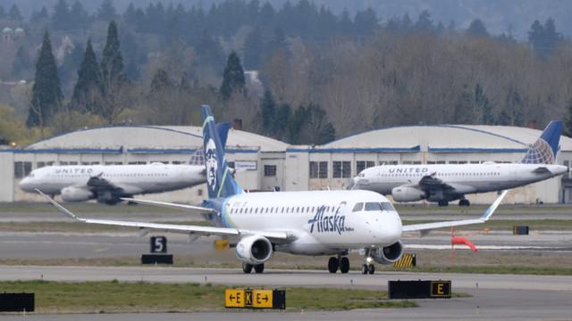 Un avion Boeing a omorât un urs. Un aparat al aceleiași companii lovise în trecut și un pește
