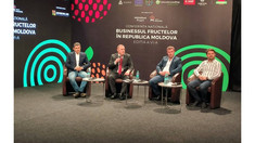 Producerea fructelor rămâne a fi de perspectivă pentru mediul de afaceri din Moldova