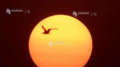 OMM: 2020, probabil al doilea cel mai călduros an din istoria măsurătorilor meteorologice