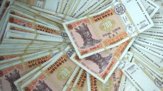 Moldovenii preferă creditele în lei, acordate pe un termen între doi și cinci ani