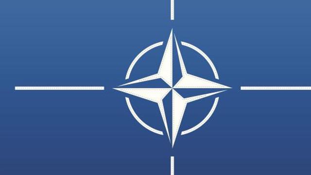 Cinci țări din cadrul NATO au purtat discuții în vederea sprijinirii Ucrainei pe fondul tensionării situației din Donbas