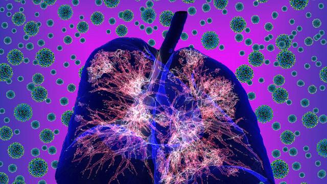 Coronavirus România. Numărul infectărilor rămâne stabil la puțin peste 5.000 de cazuri, dar nivelul de testare este unul redus