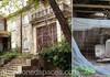 Grecia: Fostul domeniul regal Tatoi va fi redeschis pentru vizite turistice eco-responsabile