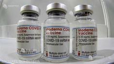 Coronavirus: O versiune modificată a vaccinului Moderna, testată împotriva variantei sud-africane în studii clinice