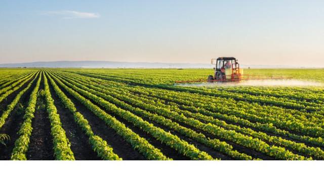 Au fost stabilite domeniile de aplicare și structura Strategiei Naționale de Dezvoltare Agricolă și Rurală 2021-2030