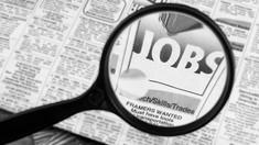 România   Se fac angajări în construcții. Ce salarii oferă firmele
