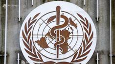 OMS: Varianta B.1.617 contribuie la explozia cazurilor de coronavirus în India