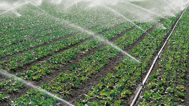 Apel pentru agricultori să depună cereri pentru subvenții în avans