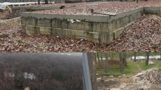 ZdG: Procuratura a pornit mai multe procese și o cauză penală în cazul construcțiilor din Pădurea Durlești