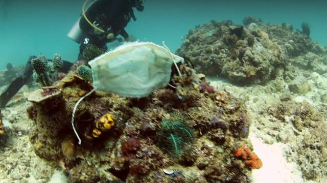 Imagini dezolante. Măștile sanitare aruncate ajung pe recifele de corali din Filipine