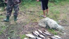 Inspectoratul pentru Protecția Mediului a aplicat amenzi de peste 11.000 de lei în cadrul perchizițiilor de combatere a cazurilor de braconaj piscicol