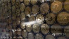 Bitcoin revine sub 30.000 de dolari, cea mai scăzută valoare din ultimele cinci luni