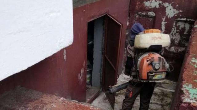 În subsolurile a 1200 de blocuri s-au efectuat lucrări de deratizare și dezinsecție