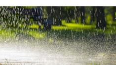 Sunt active avertizări de instabilitate atmosferică și caniculă