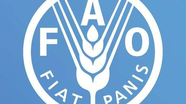 Coreea de Nord riscă o penurie alimentară începând din august, atenționează FAO