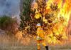 Incendii masive de vegetație în Siberia