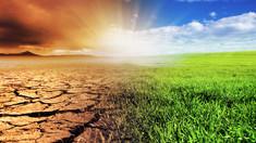 Nu vom scăpa de viitoarele șocuri globale. Care sunt cele mai bune locuri pentru a supraviețui unui colaps social global