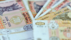 CNAS continuă finanțarea prestațiilor sociale