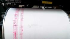 Cutremur cu magnitudinea 3,2 în județul Vrancea