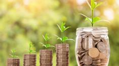 Numărul de întreprinderi cu investiții străine directe în R. Moldova, în scădere ușoară în ultimii zece ani