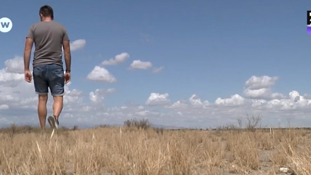Deșertul se extinde în sudul Spaniei. Întreg continentul european ar putea fi afectat în aprovizionarea cu citrice