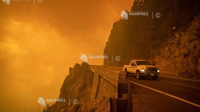 Incendiile din vara anului 2021 au provocat emisii record de CO2 (Copernicus)