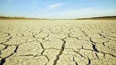 SUA | California înregistrează cel mai secetos an din ultimul secol
