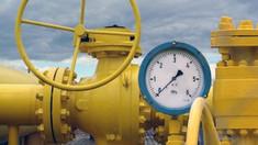 Autoritățile ar fi apelat la președintele Germaniei pentru ajutor în problema aprovizionării cu gaze